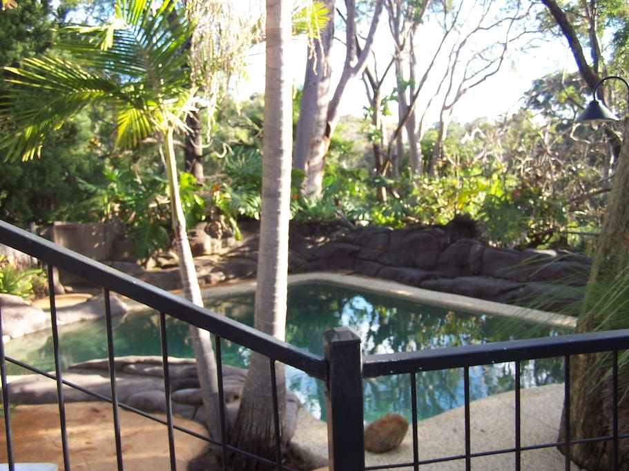 The pool area .