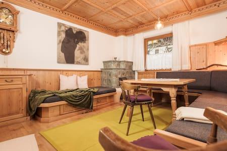 Ein Nest im traumhaften Zillertal - Ramsau im Zillertal - Apartment