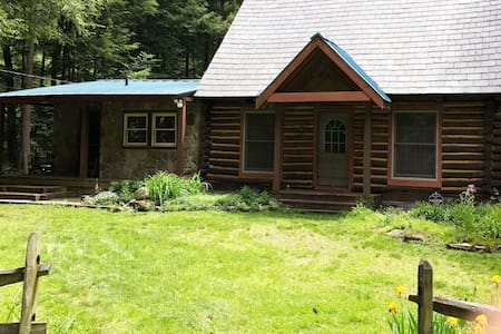 "Cabin ""54"" near Allegheny National Forest"