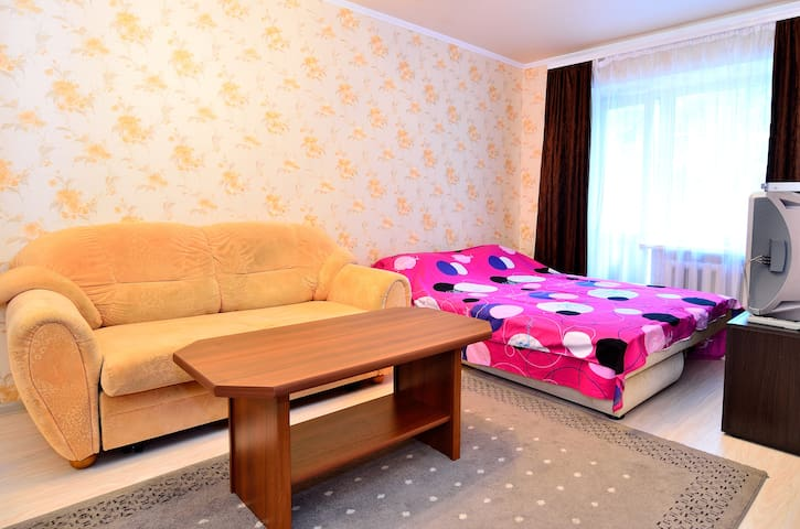 1 bedroom apartment in the quiet ce - Donetsk - Lejlighed