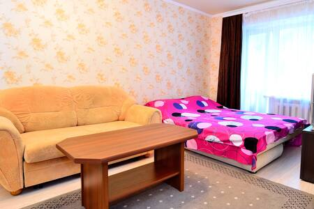 1 bedroom apartment in the quiet ce - Donetsk - Apartment
