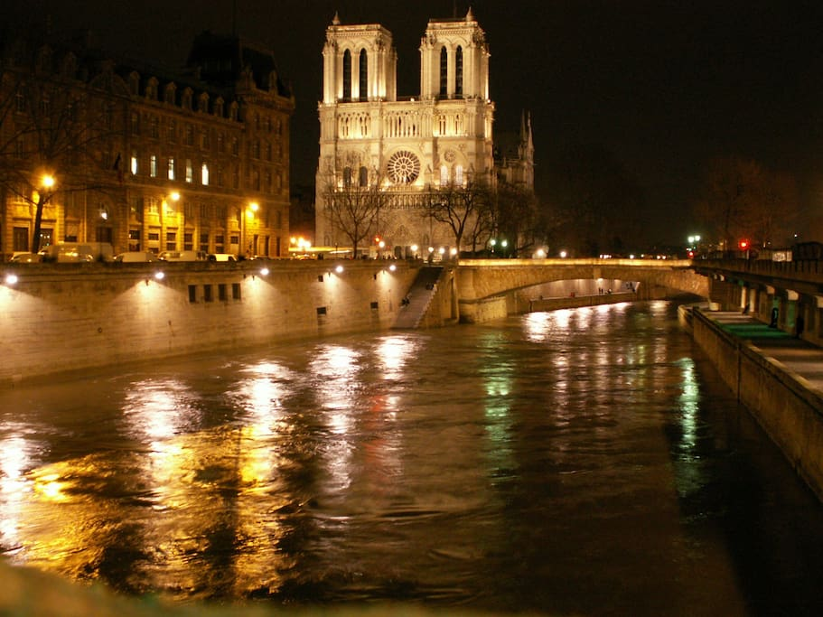 Notre Dame - 1 Minute away from the apartment