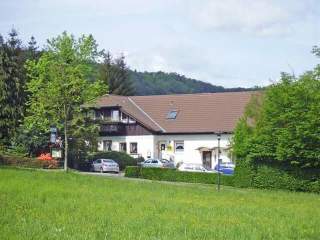 Pension u. Nichtraucher -FeWo*** Harz Residenz
