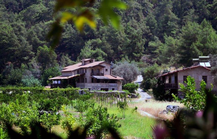 Pastoral Vadi Ecological Farm