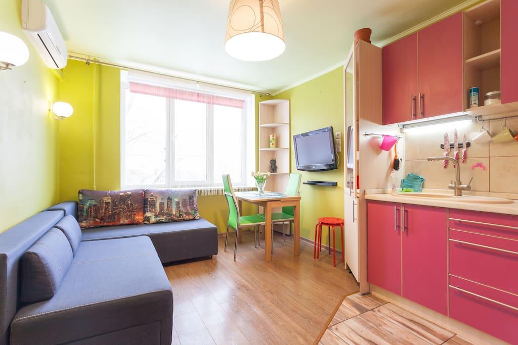 Общий вид на зал, совмещённый с кухней