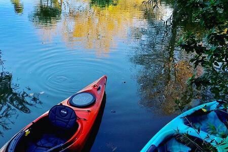 Lake Livingston - bicycles, kayaks, fishing & more