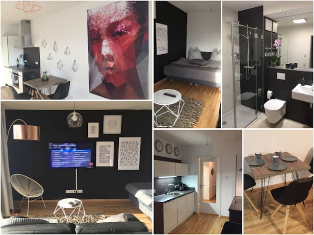 ALL NEW STUDIO Apartment Dresden City Center - Dresden - Huoneisto