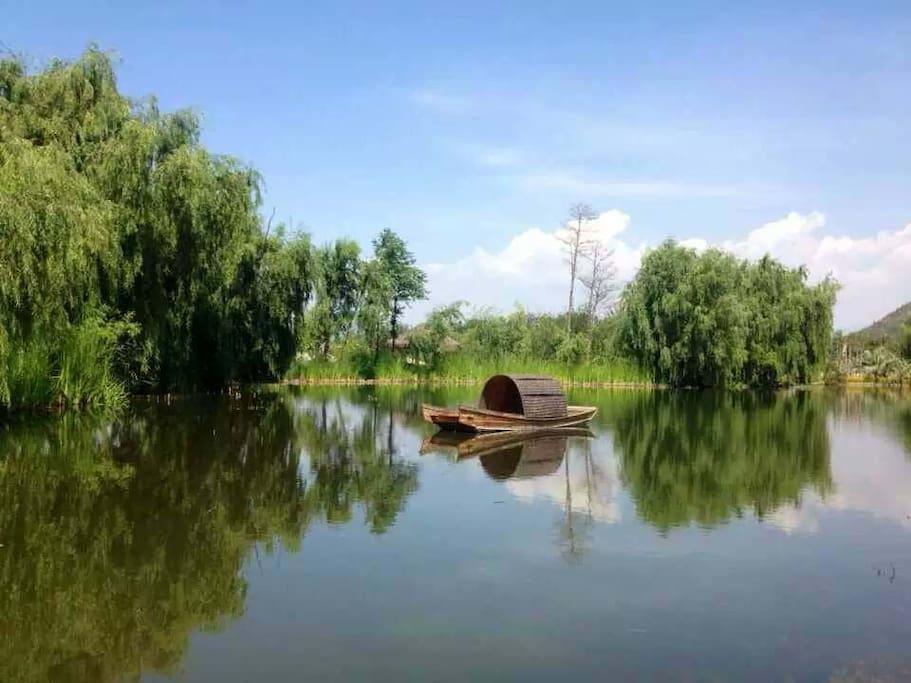 湿地公园小景