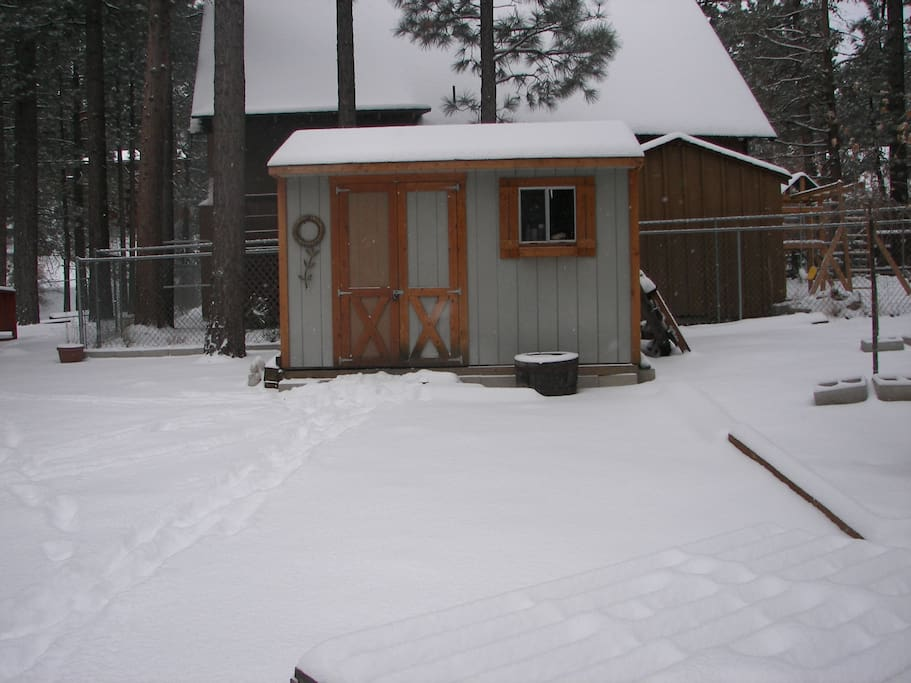This is just to show the other empty lot that the cabin is on. This is a little shed but otherwise no house on this lot.