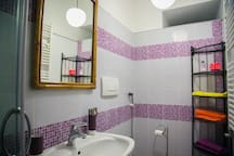 Bathroom: toilet, mirror and washbasin