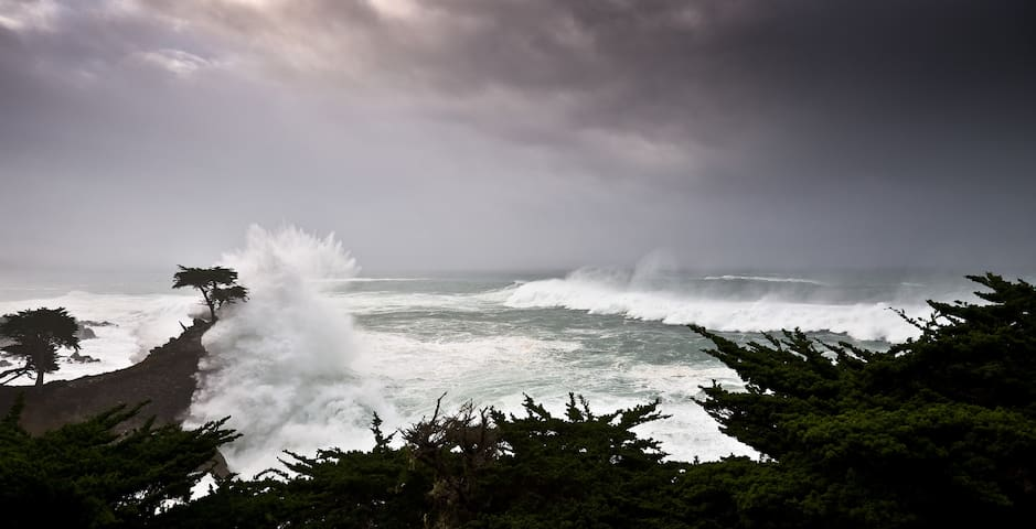 And 17 Mile Drive is only five minutes away...