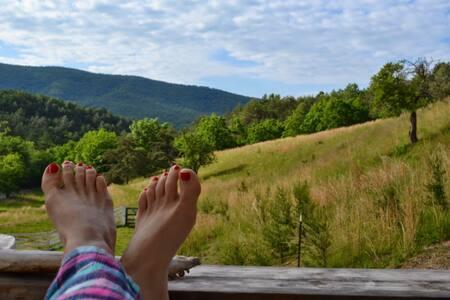 Cottage, Pool, 300 Acres of Blue Ridge Mountains