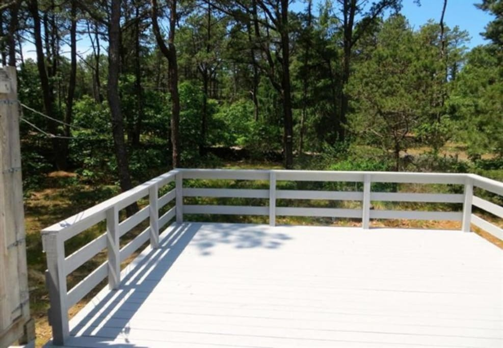 Double-size back deck with lots of bright sunshine.  Overlooks a real cranberry bog.  We'll provide deck chairs, table/umbrella, and a gas barbecue.  You provide the happy family and great memories.