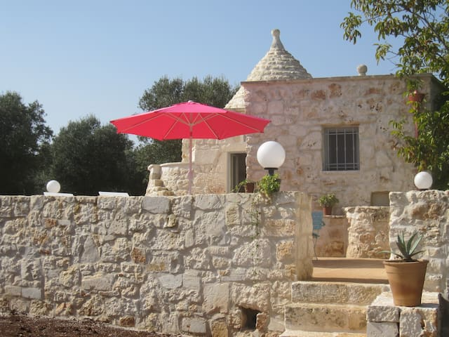 Trullo in olive grove, Ostuni