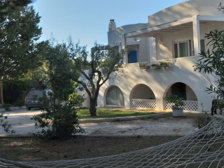 Beautiful apartments in detached vi