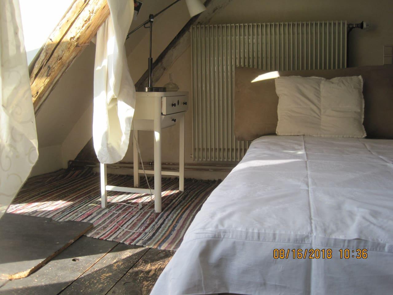 gemütliche Schlafcouch in alternativem WG-Häuschen (Mitnutzung Bad/Küche)