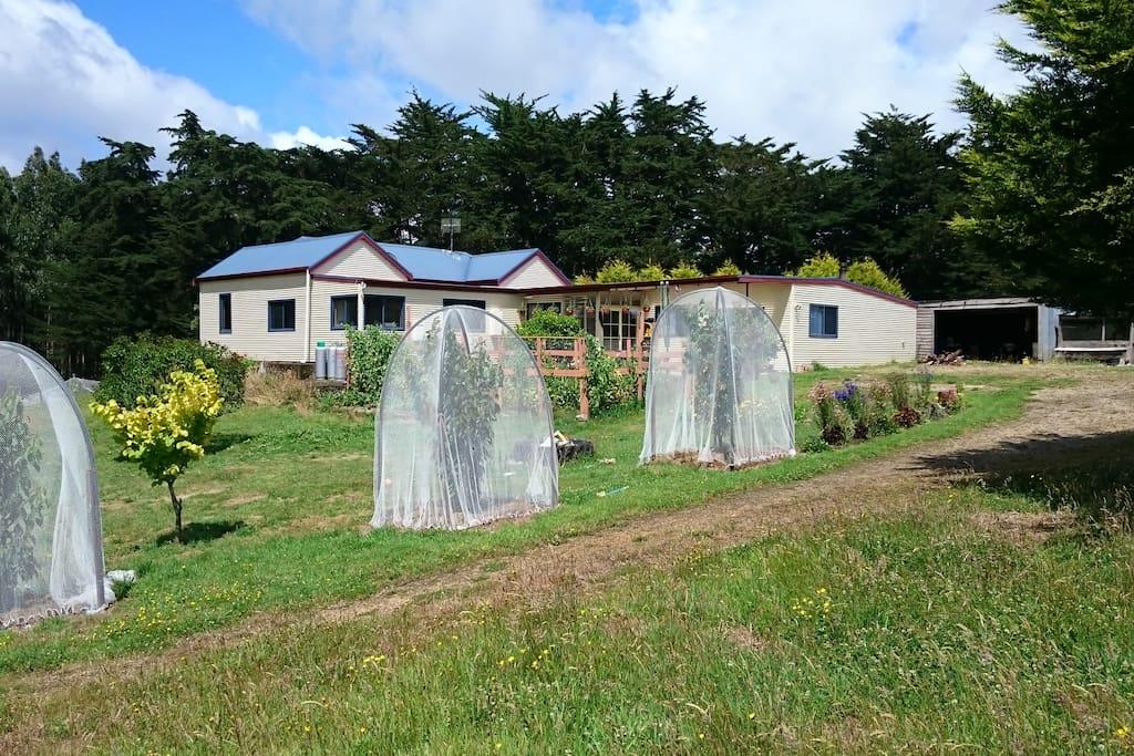 Japa Hill Farm Enterance