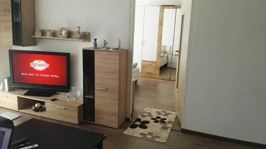 IIHF 2019-3 rooms apartment 15 min walk from ARENA