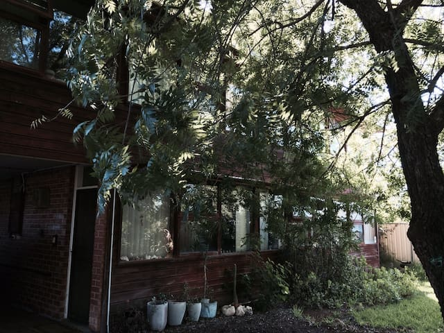 Unique house near River and CBD - Mildura - Casa