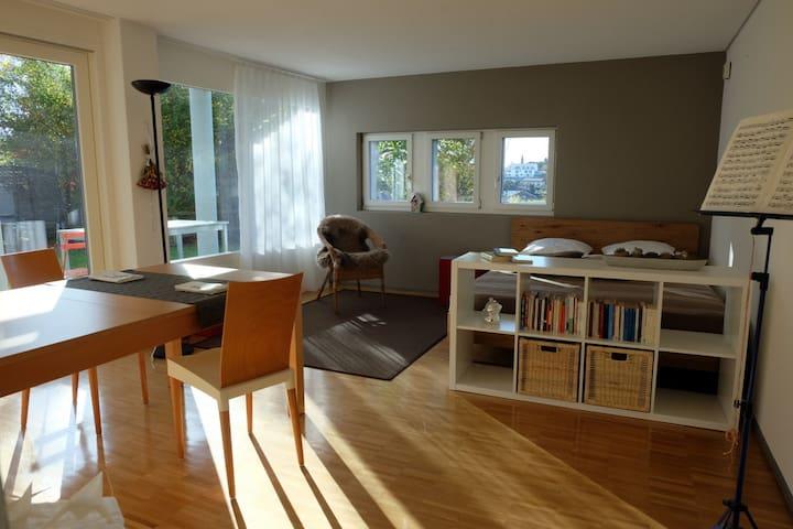 Studio sonnig mit Küche und Bad - Eschenbach - Condominium