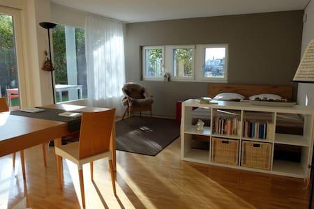 Studio sonnig mit Küche und Bad - Eschenbach