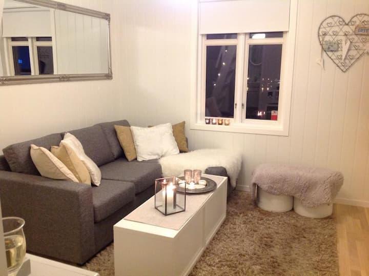 Cozy apartment over 2 floors centrally in Horten.