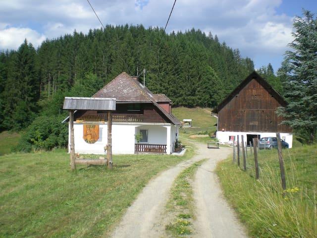 Reitbauernhof Luckyranch Ferienhaus - Strassburg