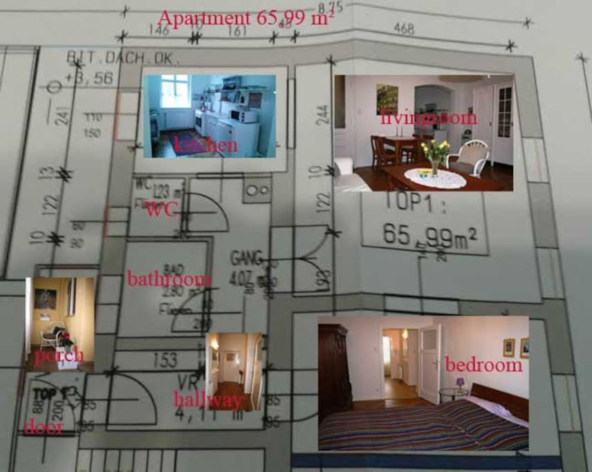 apartment  65 square meters