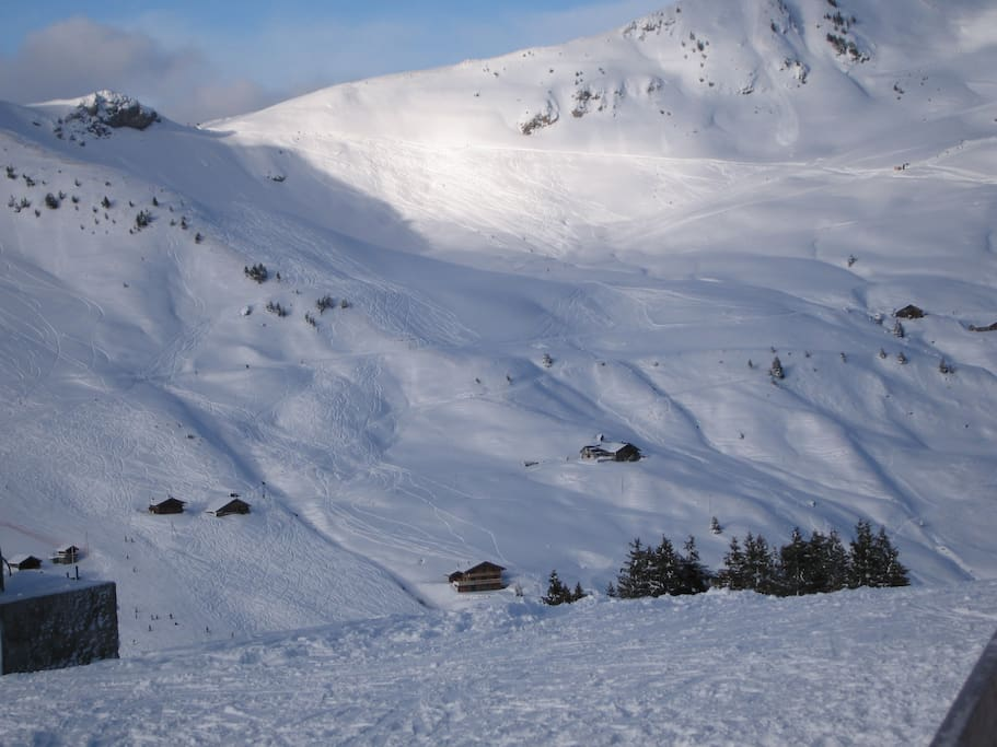 10 mins to ski slopes at Champery or Les Crosets access for all abilities.