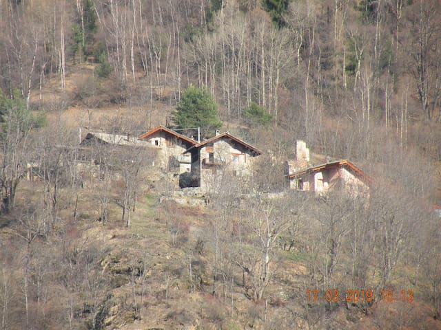 """Ozein, """"La casa del bosco"""""""