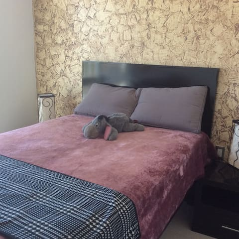 Hermosa habitación en Leon Gto. - Leon