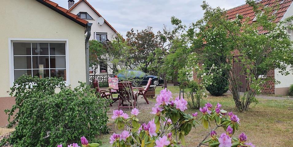 Ferienhaus Liesfeld Langewahl