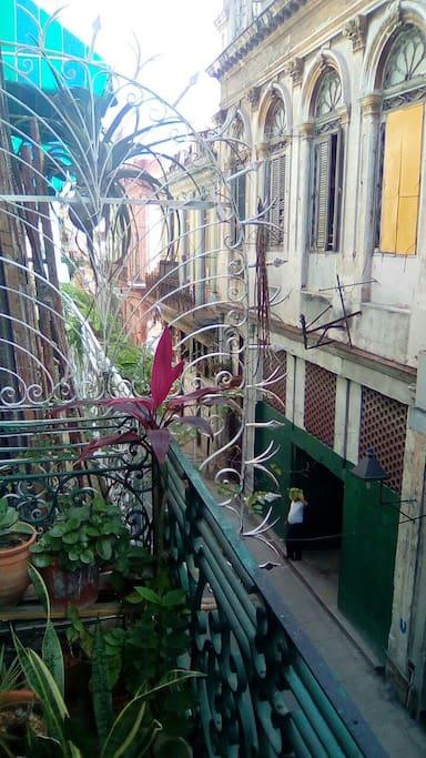 Mucha iluminación Old Havanna