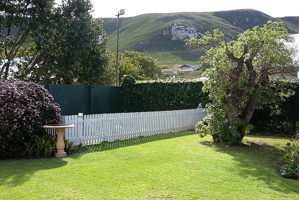 Outside view of garden and mountain