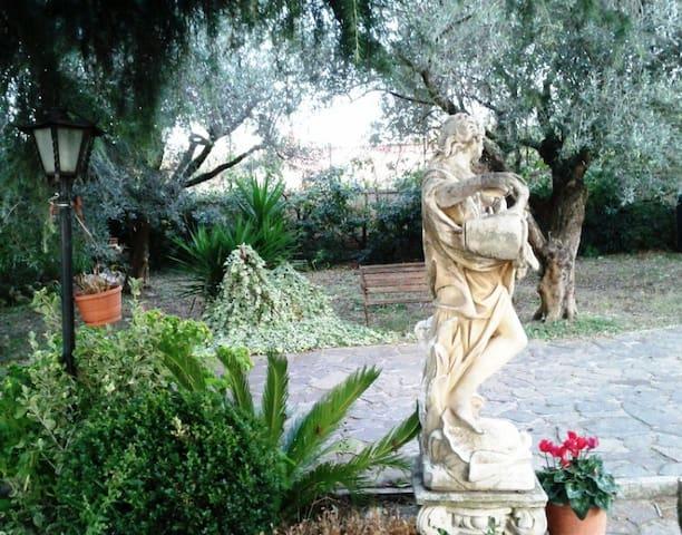 Lovely Cottage Castelli Romani - Frascati - House