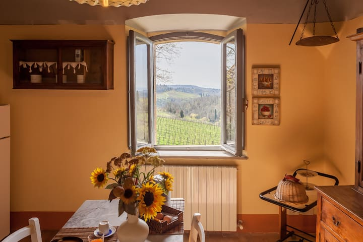 "Charming ""Chianti style"" apartment - Gaiole in Chianti - Villa"
