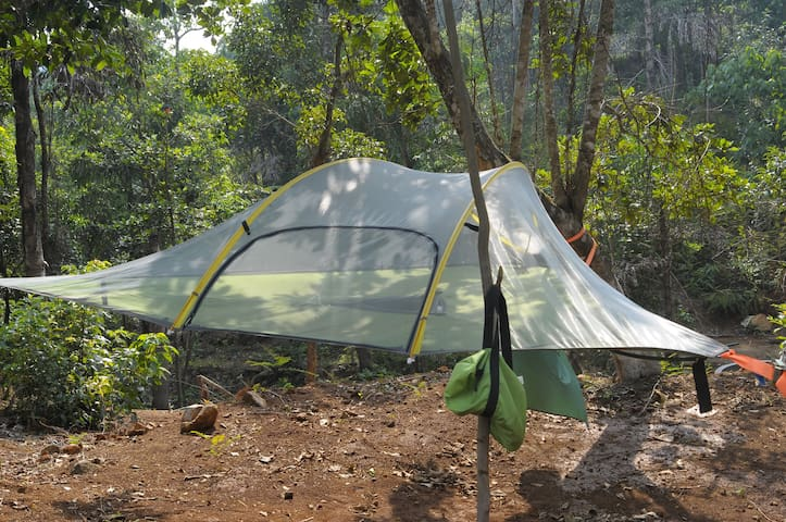 Tree Tent @ Sakleshpur Meadows