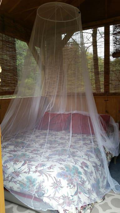 Inside the love dreaming nest