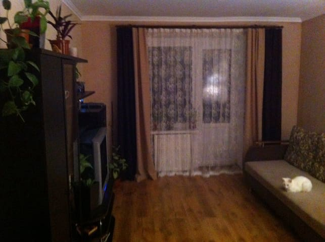 Appartment 2roomsLiving with owner  - Мукачево - Lakás