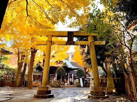 お祭りや行事、紅葉、桜などが楽しめるパワースポットの神社があります。
