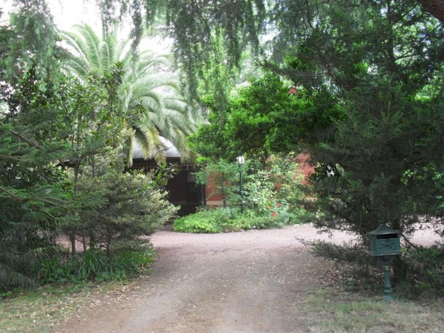 Allan Court Gardens Driveway