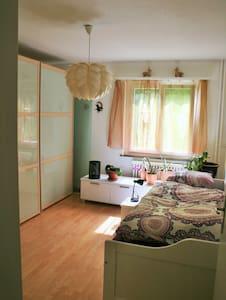 Bijoux in Luzern - ruhig, charming - Luzern - Apartemen