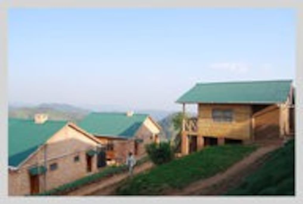 Our lodges are located in Bwindi, Impenetrable Forest, affording you easy access to the gorillas.