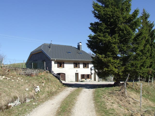 Chalet Le grand Manon - Septmoncel - House