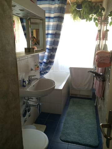Bathroom/shower, WC