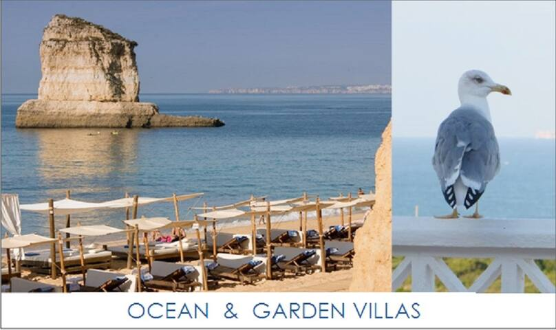 OCEAN & GARDEN VILLA