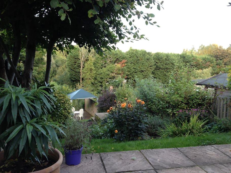 Garden patio and decking.