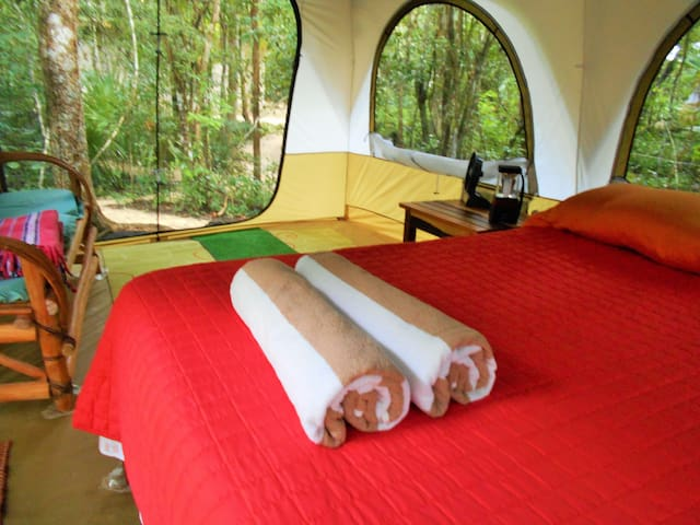 Clothing Optional Luxury camping in the jungle - Tulum - Zelt