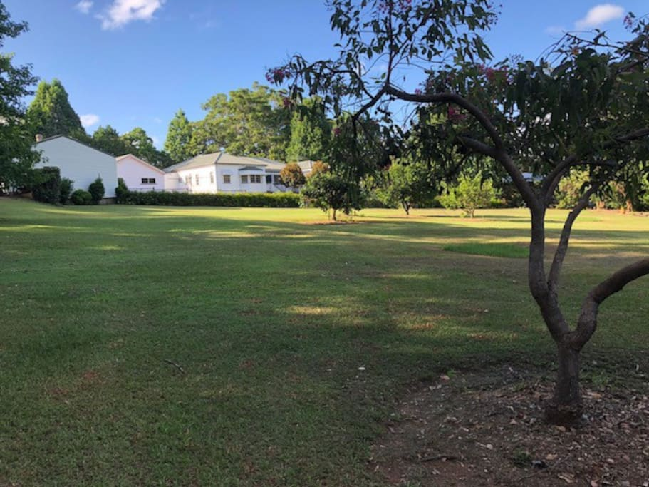 Rolling open area - 3 acres for fun and relaxation.