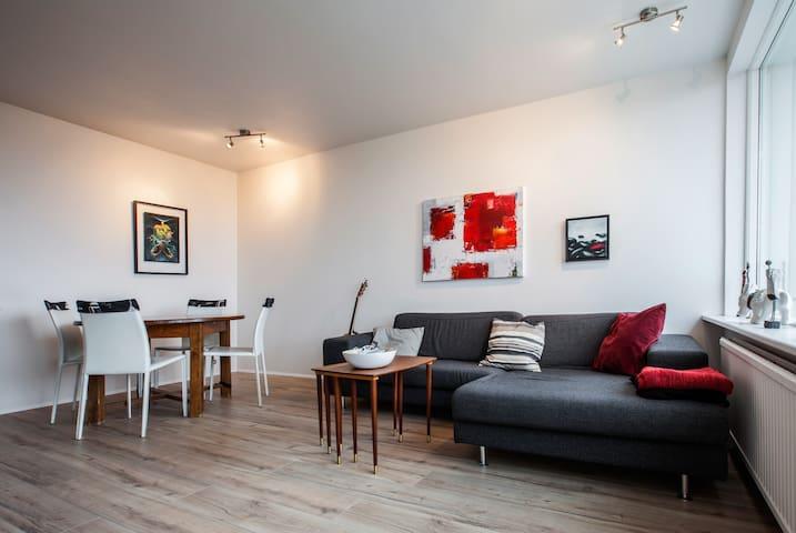 Comfortable apartment in Reykjavík - Reykjavík - Pis